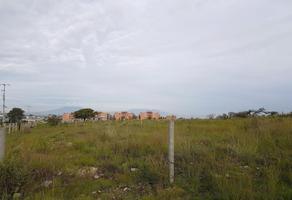 Foto de terreno comercial en venta en san francisco totimehuacán , santo tomás chautla (ixcobenta), puebla, puebla, 0 No. 01