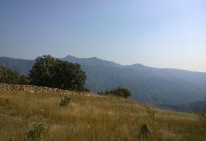 Foto de terreno habitacional en venta en  , san francisco, zapopan, jalisco, 6213614 No. 01