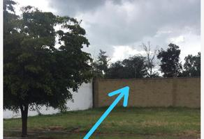 Foto de terreno comercial en venta en san gabriel 9, el mayorazgo, león, guanajuato, 15944773 No. 01