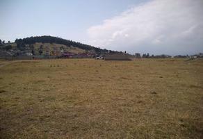 Foto de terreno habitacional en venta en san gabriel , ejido de san lorenzo cuauhtenco, almoloya de juárez, méxico, 15202863 No. 01