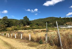 Foto de terreno comercial en venta en san gabriel , valle de bravo, valle de bravo, méxico, 15203045 No. 01