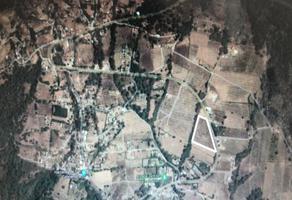 Foto de terreno comercial en venta en san gabriel , valle de bravo, valle de bravo, méxico, 15203178 No. 01