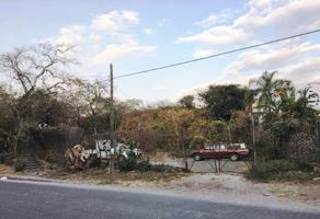 Foto de terreno comercial en venta en san gaspar 13, las fuentes, jiutepec, morelos, 5560440 No. 01