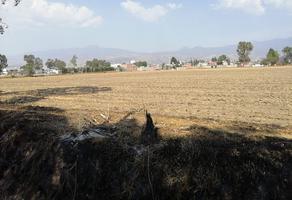 Foto de terreno habitacional en venta en san gregorio cuautzingo , san gregorio cuautzingo, chalco, méxico, 0 No. 01
