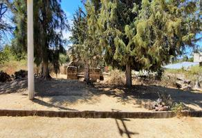 Foto de terreno habitacional en venta en  , san higinio, amealco de bonfil, querétaro, 0 No. 01