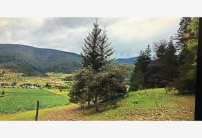 Foto de terreno habitacional en venta en san ignacio 213, san ignacio de abajo, arteaga, coahuila de zaragoza, 0 No. 01