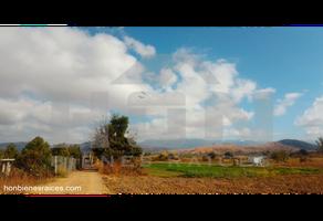 Foto de terreno habitacional en venta en  , san ignacio, oaxaca de juárez, oaxaca, 19582732 No. 01