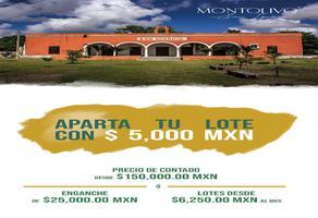 Foto de terreno habitacional en venta en san ignacio, progreso, yucatán , tesip, mérida, yucatán, 17708442 No. 01