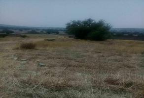 Foto de terreno habitacional en venta en  , san isidro del progreso, teotihuacán, méxico, 0 No. 01