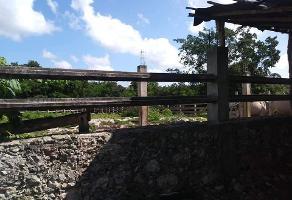 Foto de rancho en venta en  , san isidro, mérida, yucatán, 10934801 No. 01
