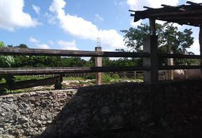 Foto de rancho en venta en  , san isidro, mérida, yucatán, 17914557 No. 01