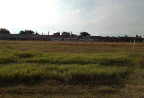 Foto de terreno habitacional en venta en  , san isidro monjas, santa cruz xoxocotlán, oaxaca, 13827576 No. 01