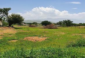 Foto de terreno habitacional en venta en  , san isidro monjas, santa cruz xoxocotlán, oaxaca, 16521219 No. 01