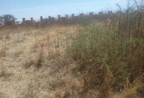 Foto de terreno habitacional en venta en  , san isidro monjas, santa cruz xoxocotlán, oaxaca, 0 No. 01