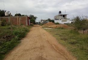 Foto de terreno habitacional en venta en san isidro monjas sin número , san isidro monjas, santa cruz xoxocotlán, oaxaca, 7749811 No. 01