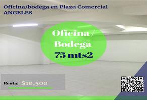 Foto de oficina en renta en san isidro , santiaguito, metepec, méxico, 0 No. 01
