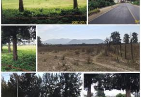 Foto de terreno comercial en venta en san isidro , villa california, tlajomulco de z??iga, jalisco, 5622239 No. 01