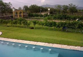 Foto de terreno habitacional en venta en  , san isidro, yautepec, morelos, 11818483 No. 01