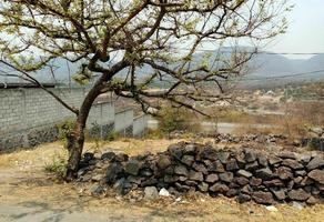 Foto de terreno habitacional en venta en  , san isidro, yautepec, morelos, 0 No. 01