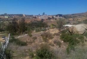 Foto de terreno habitacional en venta en san josé , adolfo ruiz cortines, ensenada, baja california, 10947732 No. 01
