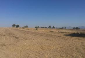 Foto de terreno habitacional en venta en  , san josé de chiapa, san josé chiapa, puebla, 16021621 No. 01