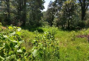 Foto de terreno habitacional en venta en  , san josé de la montaña, huitzilac, morelos, 18364765 No. 01