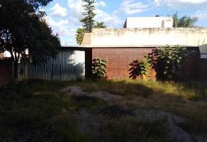 Foto de terreno habitacional en venta en  , san jose de la noria, oaxaca de juárez, oaxaca, 0 No. 01