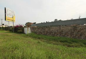 Foto de terreno habitacional en venta en  , san jose de la trinidad, tarímbaro, michoacán de ocampo, 5882357 No. 01