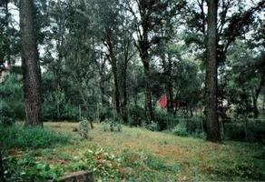 Foto de terreno habitacional en venta en  , san josé de las cumbres, emiliano zapata, morelos, 0 No. 01