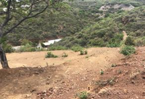 Foto de terreno habitacional en venta en  , san josé de pinos, guanajuato, guanajuato, 15422472 No. 01