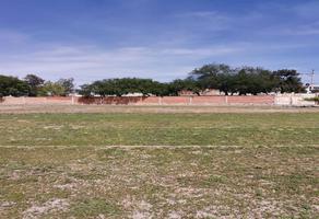 Foto de terreno comercial en venta en san jose del barro 500, san josé del barro, soledad de graciano sánchez, san luis potosí, 0 No. 01