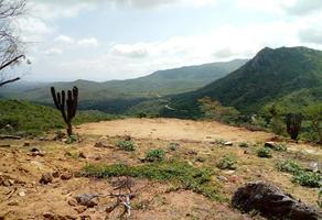 Foto de terreno comercial en venta en  , san josé del cabo centro, los cabos, baja california sur, 0 No. 01