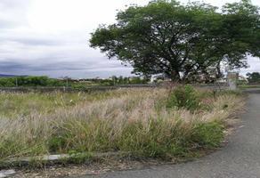 Foto de terreno habitacional en venta en  , san jose del naranjo, morelos, michoacán de ocampo, 5594304 No. 01
