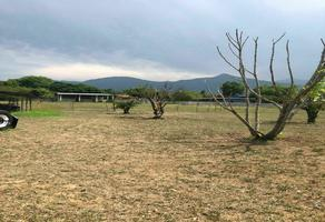 Foto de terreno habitacional en venta en  , san jose del norte, santiago, nuevo león, 0 No. 01