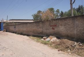 Foto de terreno habitacional en venta en  , san jose del valle, tlajomulco de zúñiga, jalisco, 14261858 No. 01