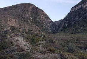 Foto de terreno habitacional en venta en  , san josé los nuncios, ramos arizpe, coahuila de zaragoza, 0 No. 01