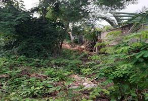 Foto de terreno habitacional en venta en  , san jose, mérida, yucatán, 18576271 No. 01