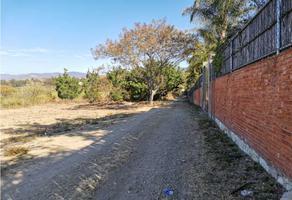 Foto de terreno habitacional en venta en  , san josé, villa de etla, oaxaca, 19582782 No. 01