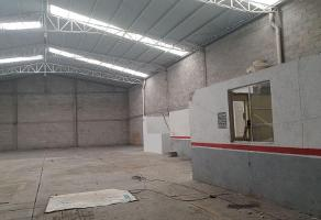 Foto de nave industrial en renta en  , san juan cuautlancingo centro, cuautlancingo, puebla, 0 No. 01