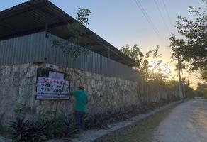 Foto de terreno habitacional en venta en san juan de la rosa , supermanzana 52, benito juárez, quintana roo, 0 No. 01