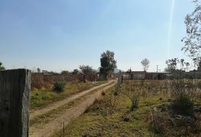 Foto de terreno habitacional en venta en  , san juan, san pedro tlaquepaque, jalisco, 0 No. 01