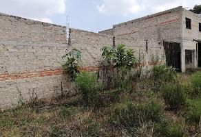 Foto de terreno habitacional en venta en san juan , santa cruz del astillero, el arenal, jalisco, 11890930 No. 01