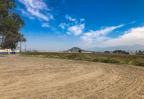 Foto de terreno habitacional en venta en  , san juan temamatla, temamatla, méxico, 20106382 No. 01