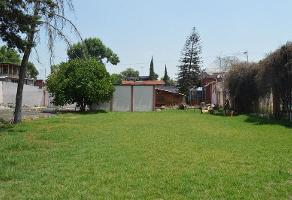 Foto de terreno habitacional en venta en  , san juan tepepan, xochimilco, df / cdmx, 16846800 No. 01