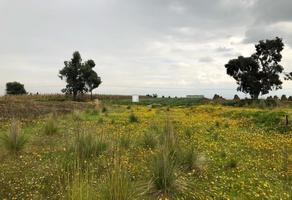 Foto de terreno comercial en venta en san juan tilapa , el cerro del perico, toluca, méxico, 15689095 No. 01