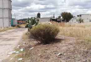 Foto de terreno habitacional en venta en  , san juan tilcuautla, san agustín tlaxiaca, hidalgo, 10103807 No. 01