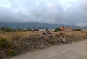 Foto de terreno habitacional en venta en  , san juan tilcuautla, san agustín tlaxiaca, hidalgo, 13762407 No. 01