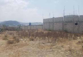 Foto de terreno habitacional en venta en  , san juan tilcuautla, san agustín tlaxiaca, hidalgo, 14393231 No. 01