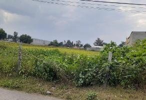 Foto de terreno habitacional en venta en  , san juan, tláhuac, df / cdmx, 16845955 No. 01