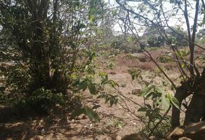 Foto de terreno habitacional en venta en san juan tumbio , santa maria de huiramangaro, pátzcuaro, michoacán de ocampo, 0 No. 01